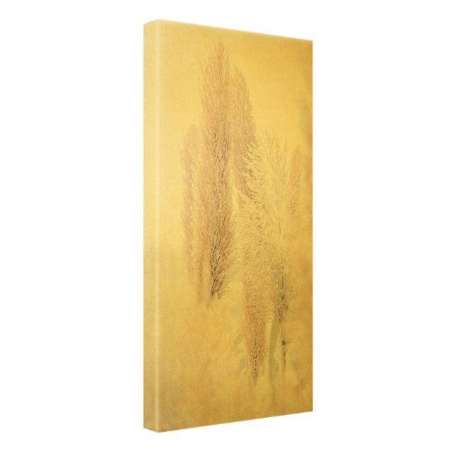 Leinwandbild Gold - Pampasgras im Weißen Licht - Hochformat 1:2