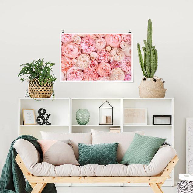 Poster - Rosen Rosé Koralle Shabby - Querformat 2:3