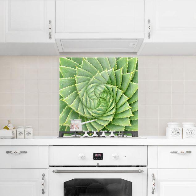 Glas Spritzschutz - Spiral Aloe - Quadrat - 1:1