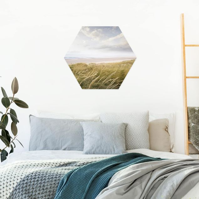 Hexagon Bild Forex - Dünentraum