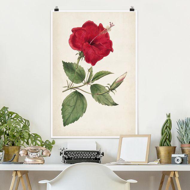 Poster - Gartenschönheit III - Hochformat 3:2