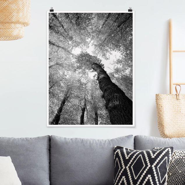 Poster - Bäume des Lebens II - Hochformat 3:4