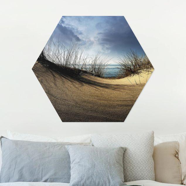 Hexagon Bild Alu-Dibond - Sanddüne