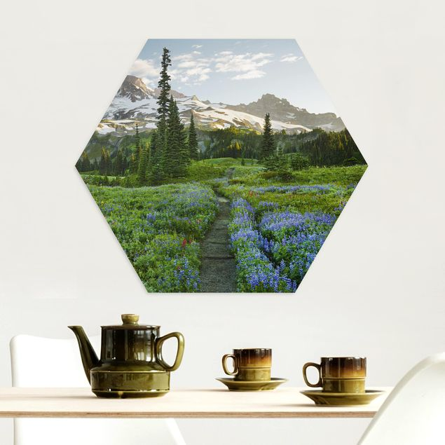 Hexagon Bild Alu-Dibond - Bergblick Wiesenpfad