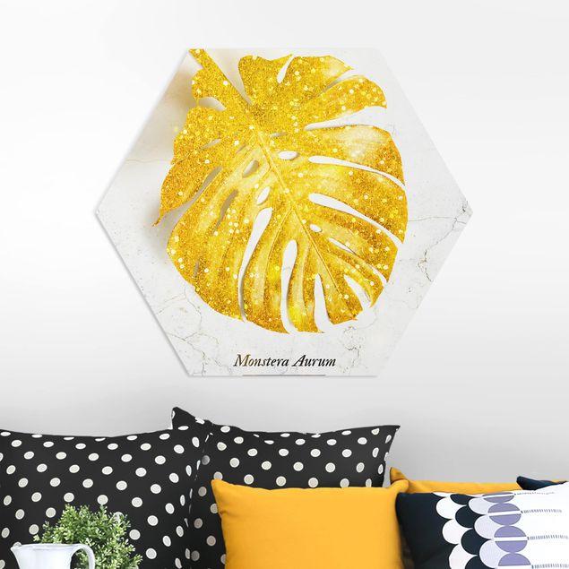 Hexagon Bild Forex - Gold - Monstera Aurum