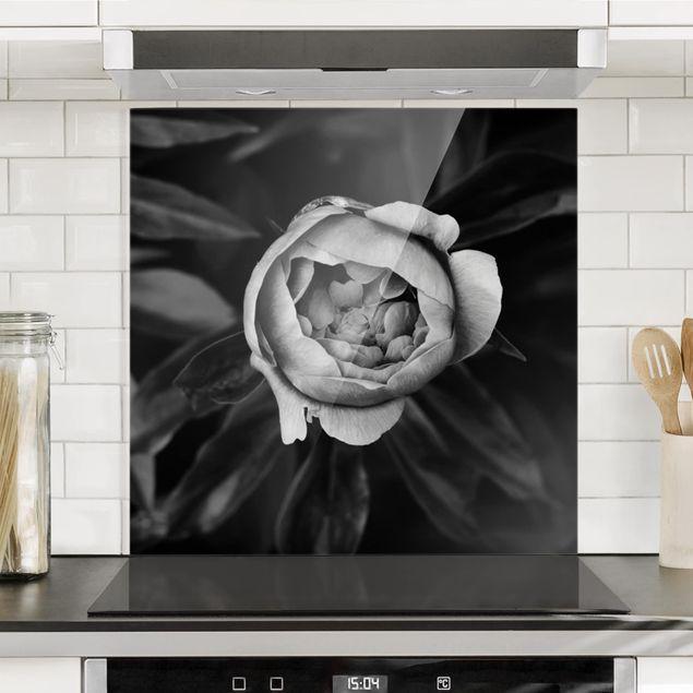 Spritzschutz Glas - Pfingstrosenblüte vor Blättern Schwarz Weiß - Quadrat 1:1
