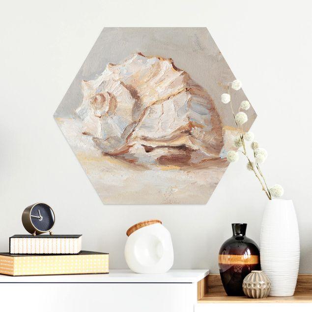 Hexagon Bild Alu-Dibond - Muschel-Studie II