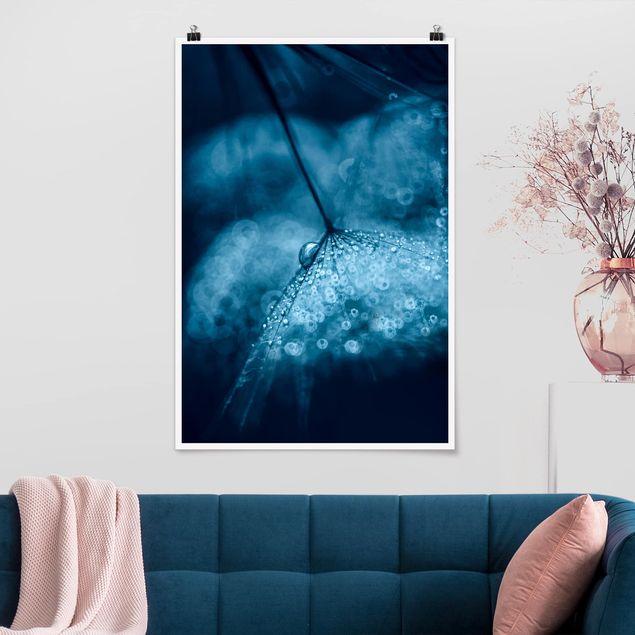 Poster - Blaue Pusteblume im Regen - Hochformat 3:2