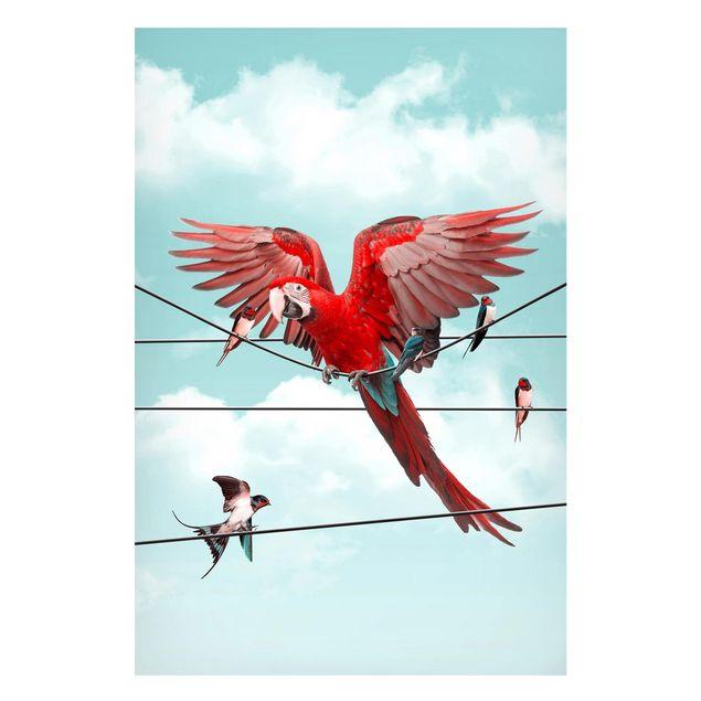 Magnettafel - Jonas Loose - Himmel mit Vögeln - Memoboard Hochformat 3:2