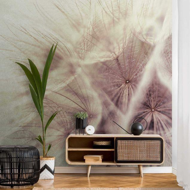 Metallic Tapete - Detailreiche Pusteblumen Makroaufnahme mit Vintage Blur Effekt