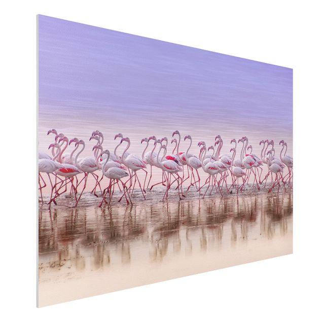 Forex Fine Art Print - Flamingo Party - Querformat 2:3