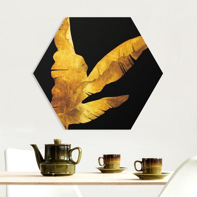 Hexagon Bild Forex - Gold - Bananenpalme auf Schwarz