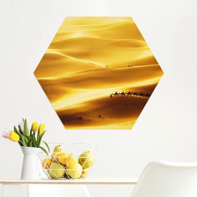Hexagon Bild Alu-Dibond - Golden Dunes