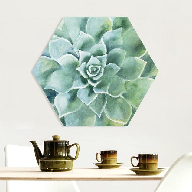Hexagon Bild Forex - Sukkulente Aquarell Dunkel