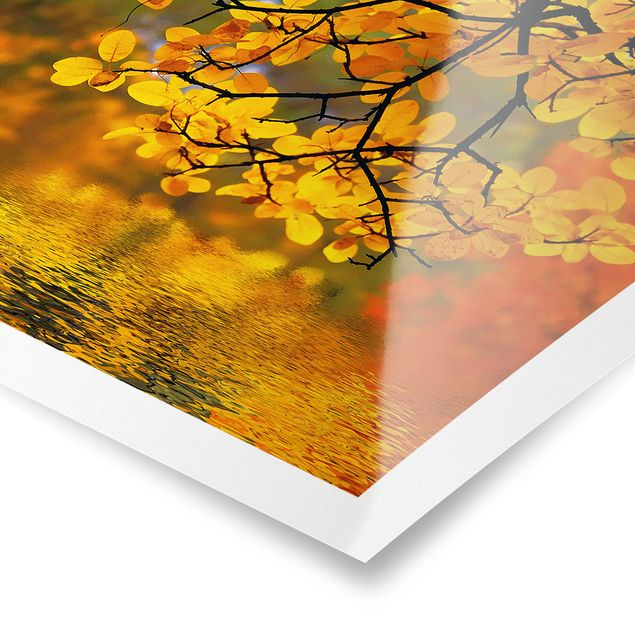 Poster - Touching the Water - Quadrat 1:1