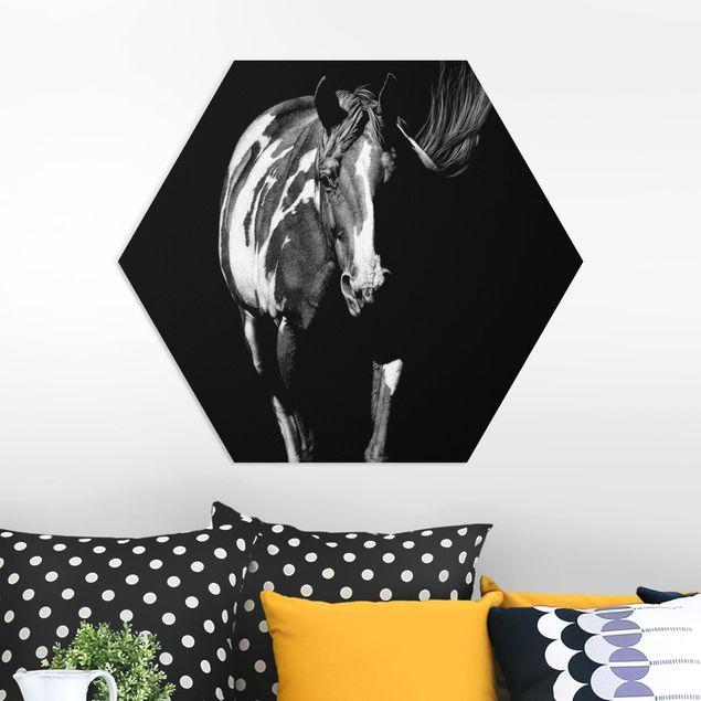 Hexagon Bild Forex - Pferd vor Schwarz