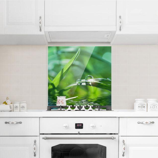 Glas Spritzschutz - Green Ambiance II - Quadrat - 1:1