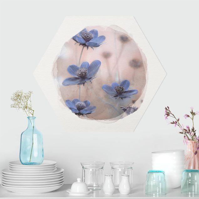 Hexagon Bild Forex - Wasserfarben - Blaue Kosmeen
