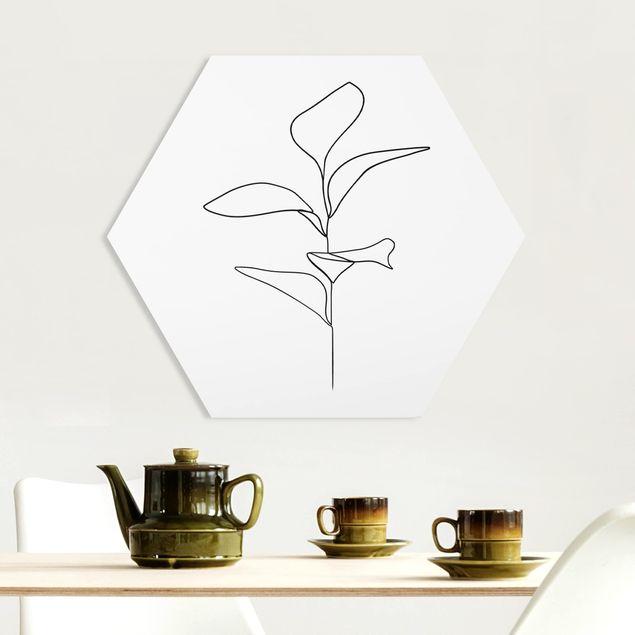 Hexagon Bild Forex - Line Art Pflanze Blätter Schwarz Weiß