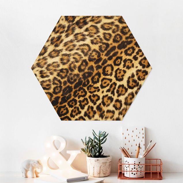 Hexagon Bild Forex - Jaguar Skin