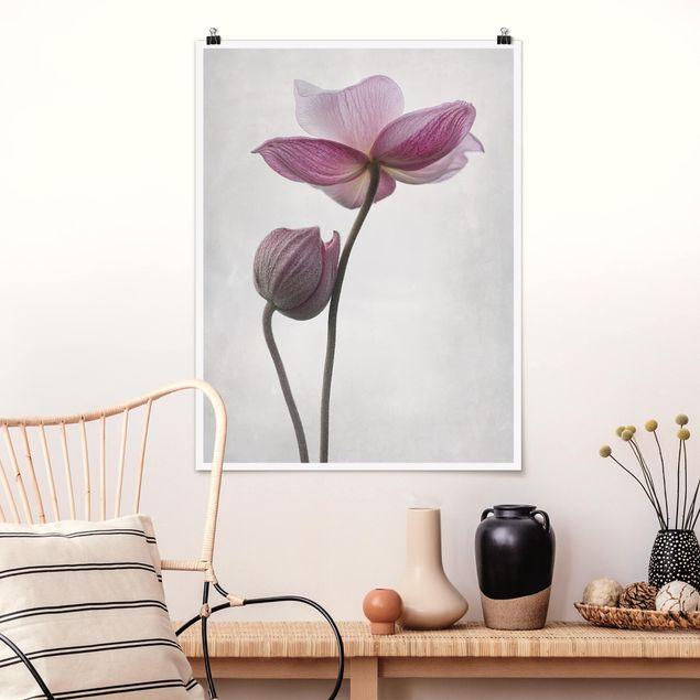 Poster - Anemonen in rosa - Hochformat 3:4