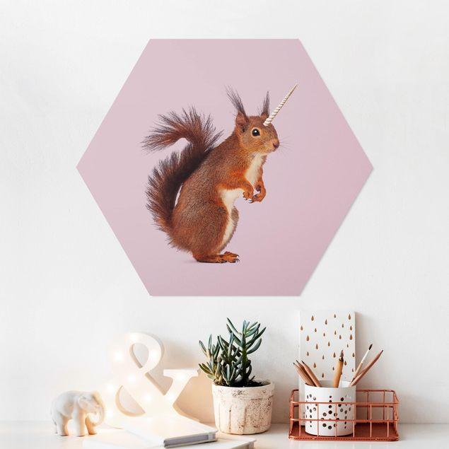 Hexagon Bild Forex - Jonas Loose - Einhörnchen