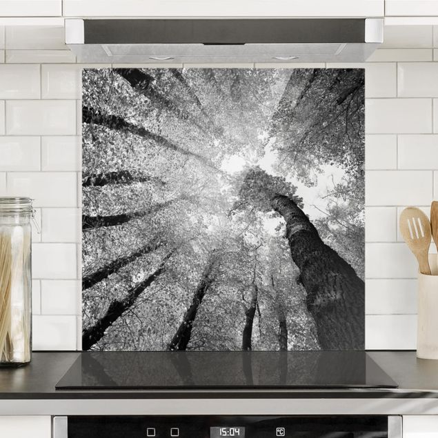 Glas Spritzschutz - Bäume des Lebens II - Quadrat - 1:1