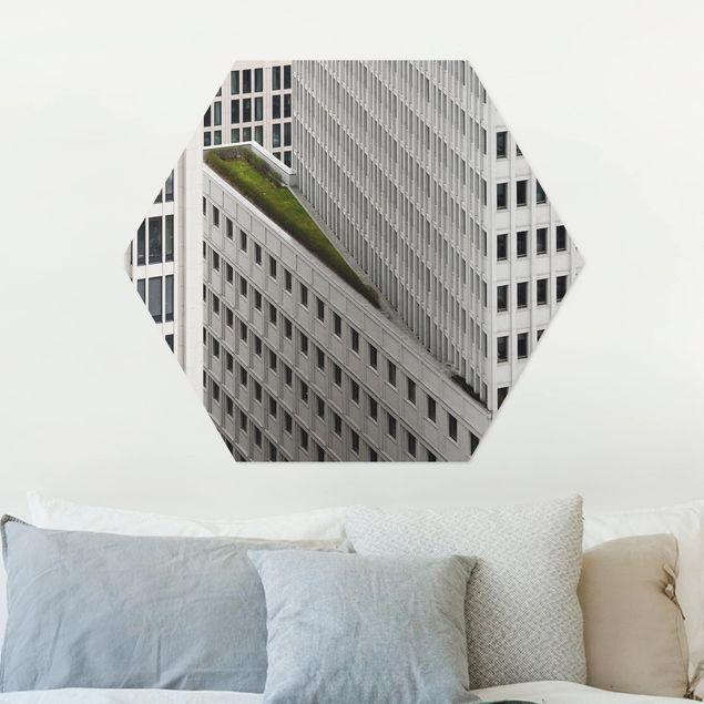 Hexagon Bild Alu-Dibond - Das grüne Element