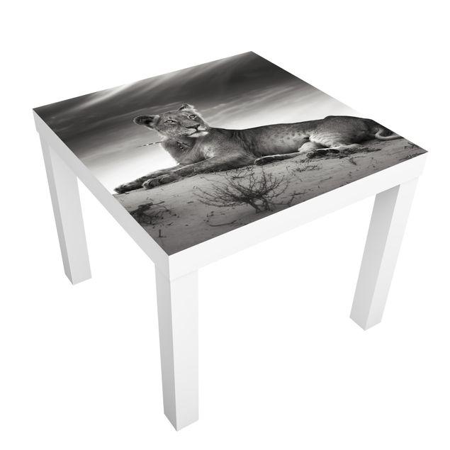 Möbelfolie für IKEA Lack - Klebefolie Resting Lion