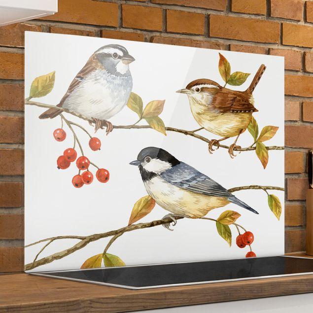 Glas Spritzschutz - Vögel und Beeren - Meisen - Querformat - 4:3