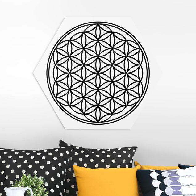 Hexagon Bild Forex - Blume des Lebens