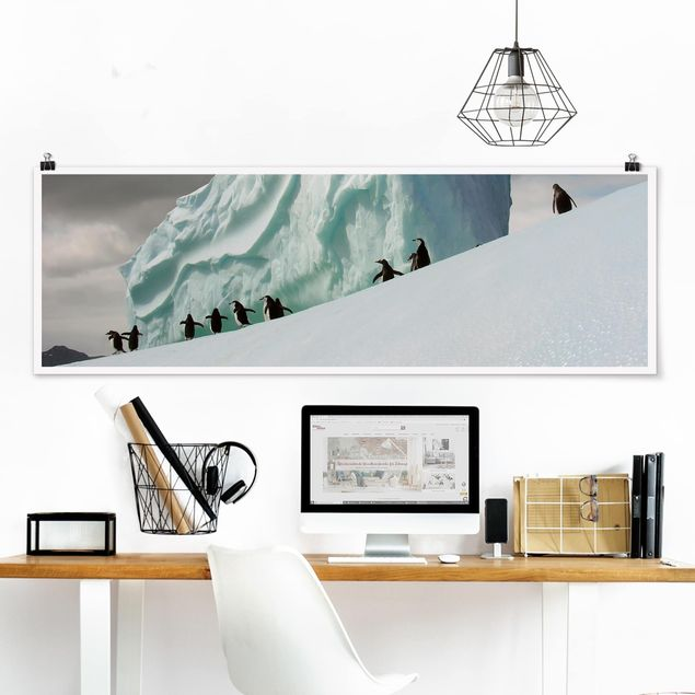 Poster - Arctic Penguins - Panorama Querformat