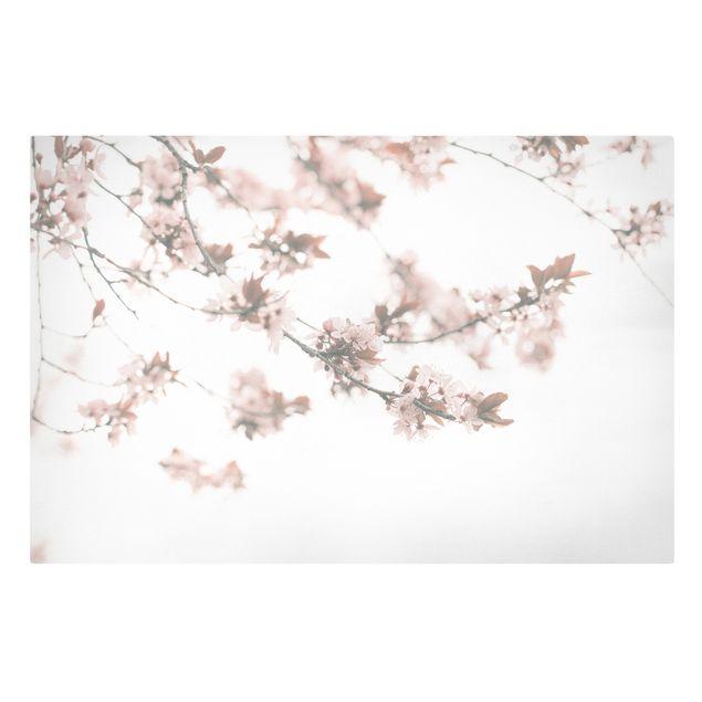 Leinwandbild - Erinnerungen an den Frühling - Querformat 3:2