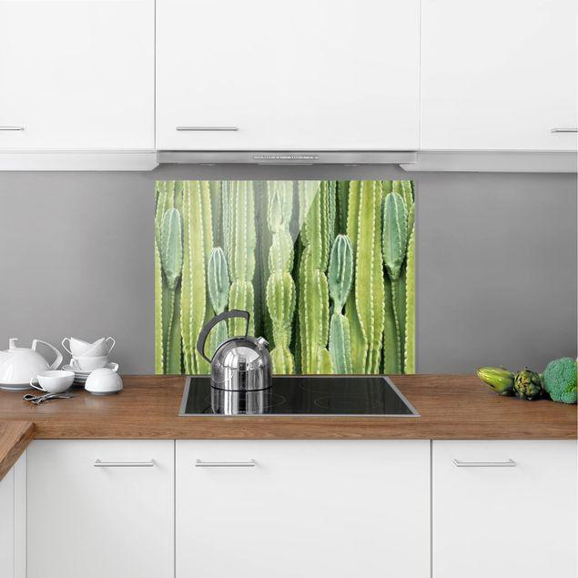 Glas Spritzschutz - Kaktus Wand - Querformat - 4:3