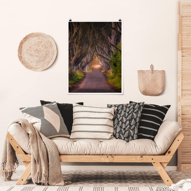 Poster - Tunnel aus Bäumen - Hochformat 3:4