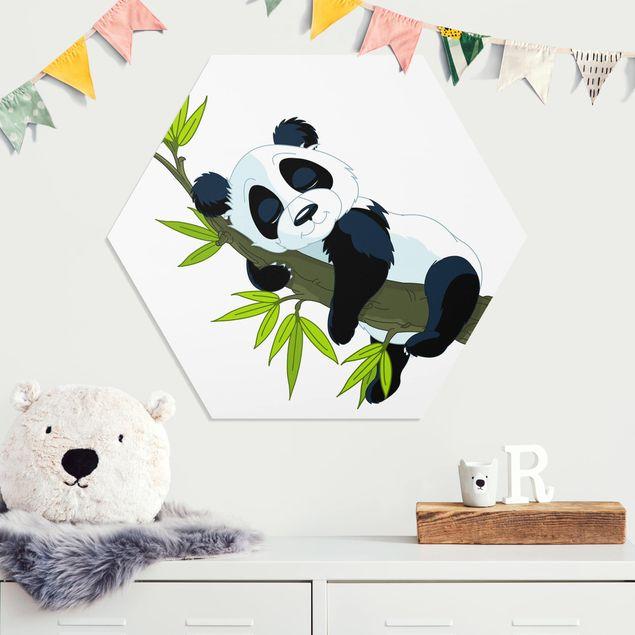 Hexagon Bild Forex - Schlafender Panda