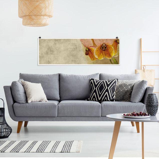 Poster - Forgotten Beauties III - Panorama Querformat