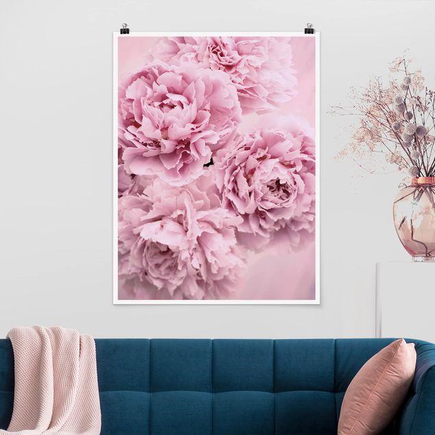 Poster - Rosa Pfingstrosen - Hochformat 4:3