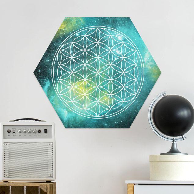 Hexagon Bild Forex - Blume des Lebens im Licht der Sterne