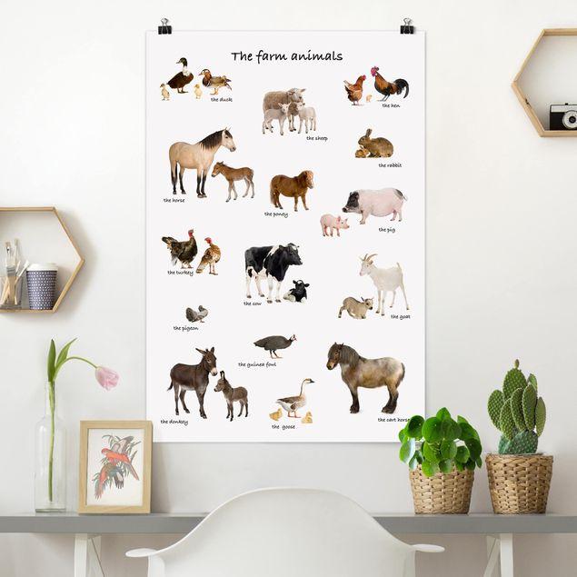 Poster - Farm Animals - Hochformat 3:2