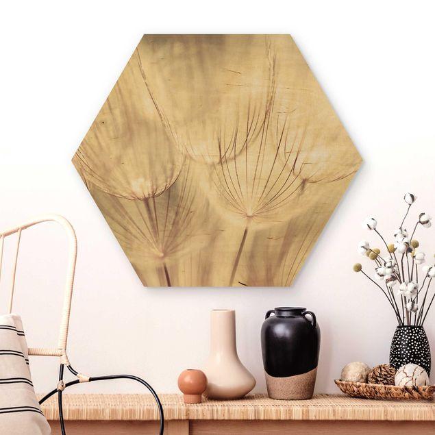 Hexagon Bild Holz - Pusteblumen Nahaufnahme in wohnlicher Sepia Tönung
