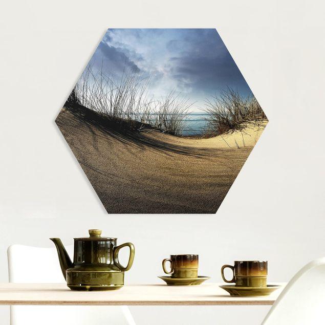 Hexagon Bild Forex - Sanddüne