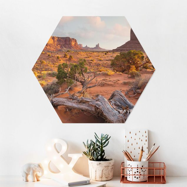 Hexagon Bild Forex - Monument Valley Navajo Tribal Park Arizona