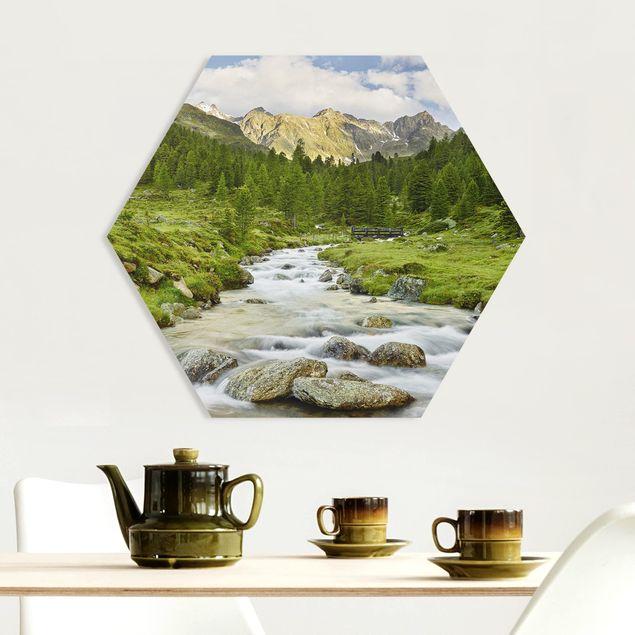 Hexagon Bild Forex - Debanttal Nationalpark Hohe Tauern