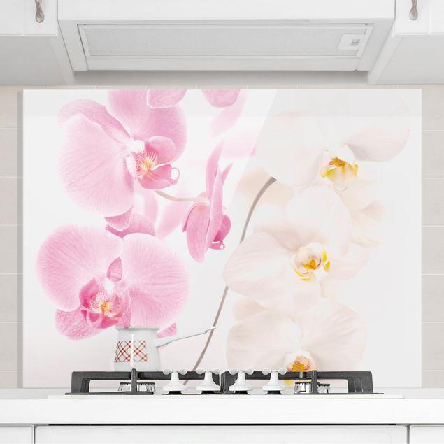 Glas Spritzschutz - Delicate Orchids - Querformat - 4:3