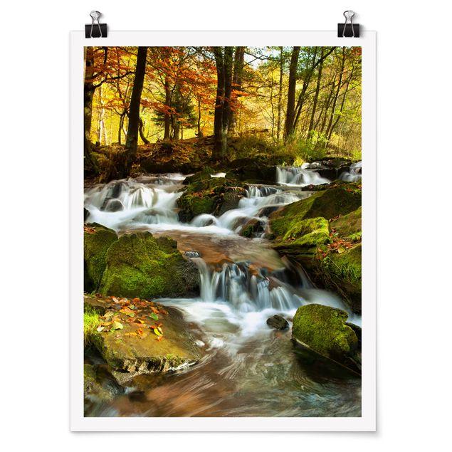 Poster - Wasserfall herbstlicher Wald - Hochformat 3:4