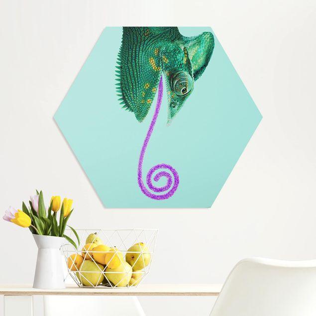 Hexagon Bild Forex - Jonas Loose - Chamäleon mit Zuckerzunge