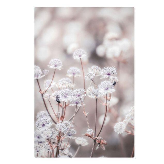 Leinwandbild - Federleichte Wildblumen - Hochformat 2:3