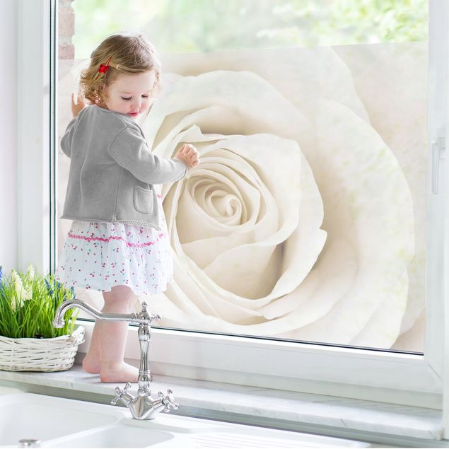 Fensterfolie - Sichtschutz Fenster Pretty White Rose - Fensterbilder