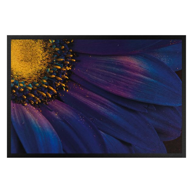 Fußmatte - Blaue Gerberablüte